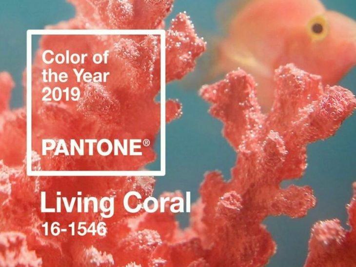 fondo de coral con pantone
