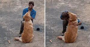 Albañil fue sorprendido con abrazo de perrita en su primer día de trabajo. Quería besos y jugar